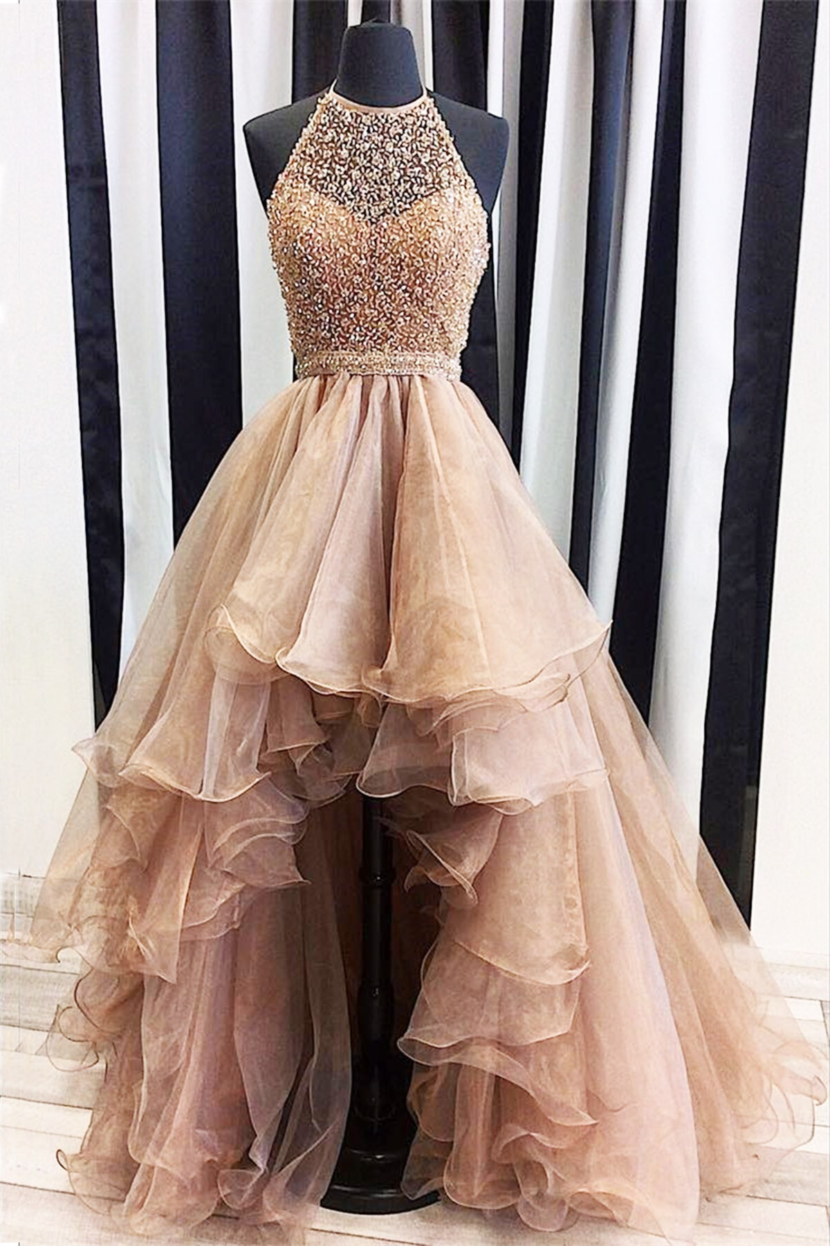Evening Dresses,Plus Size Prom Gown,Chic Formal Dress,Organza ...